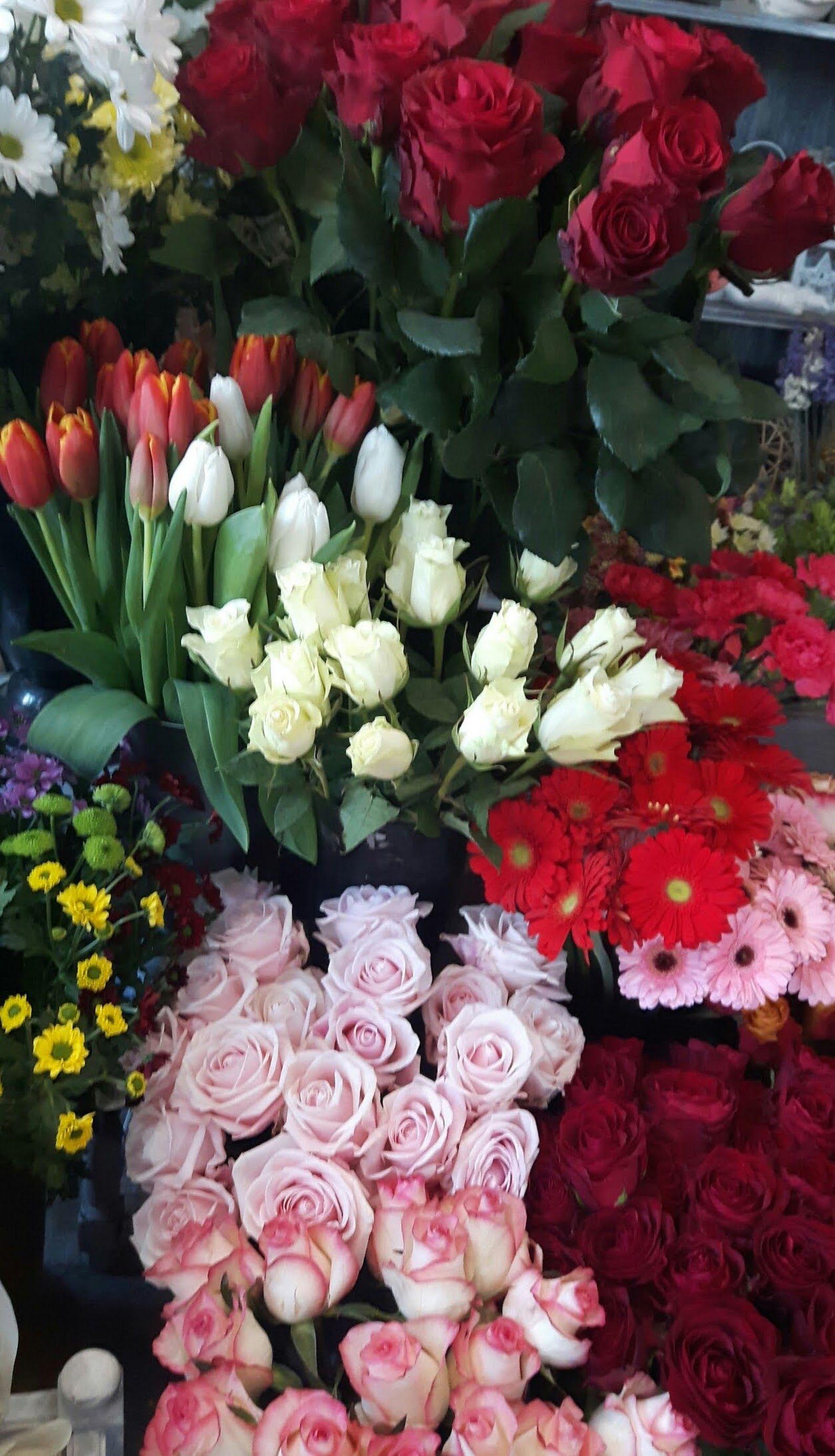 Beautiful Flowers For You Pikne Kwiaty Dla Ciebie