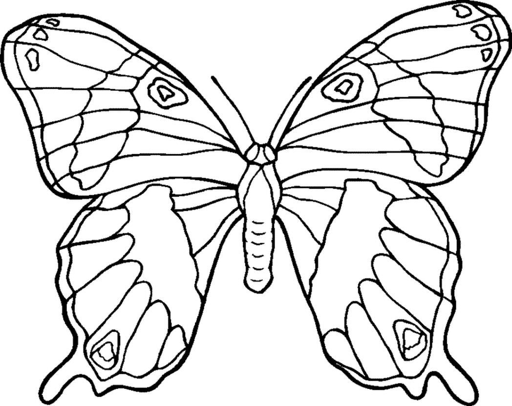 http://colorings.co/free-coloring-pages-flowers-and-butterflies ...