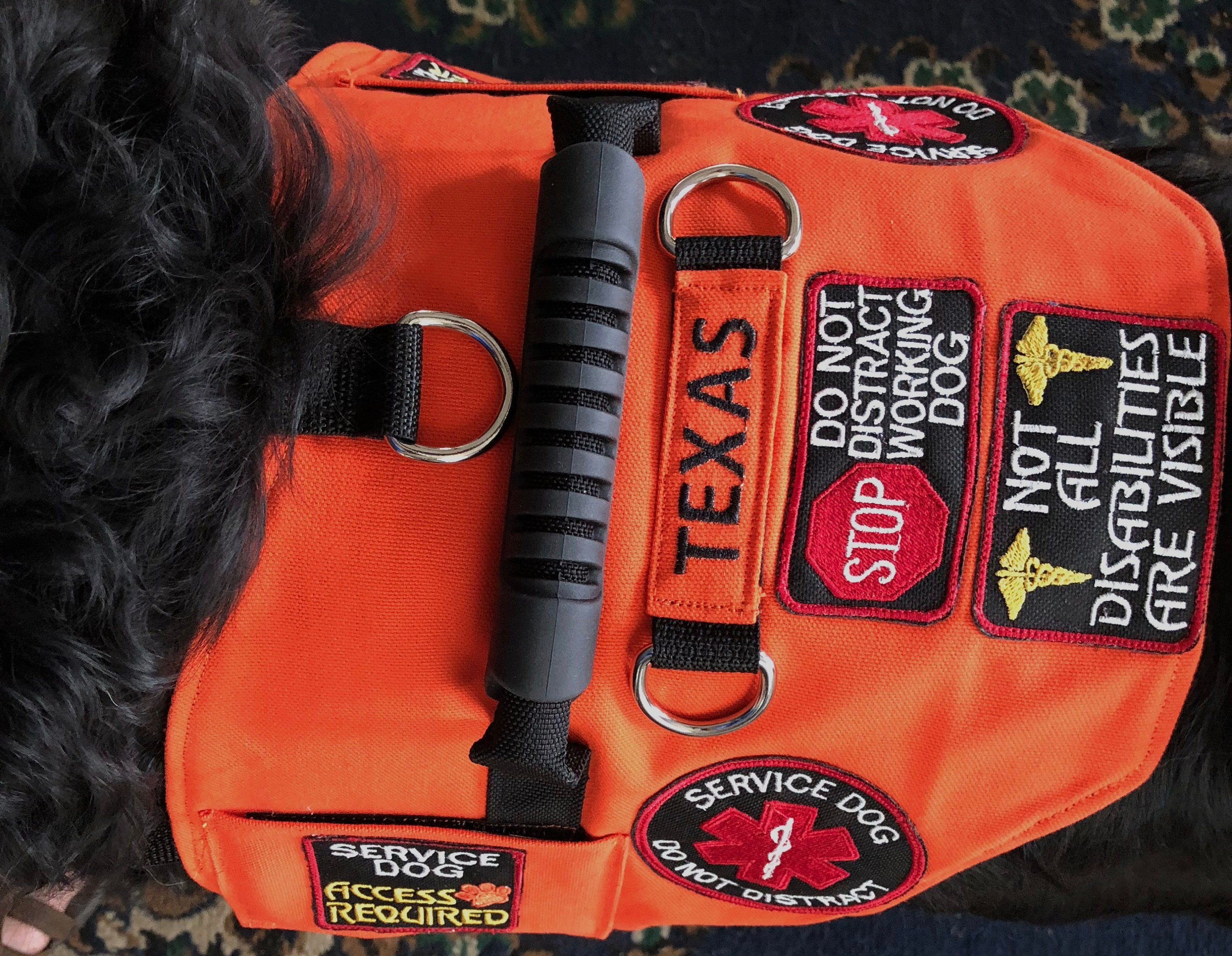 Deluxe Canvas Service Dog Vest. Includes 7 Patches! Lined