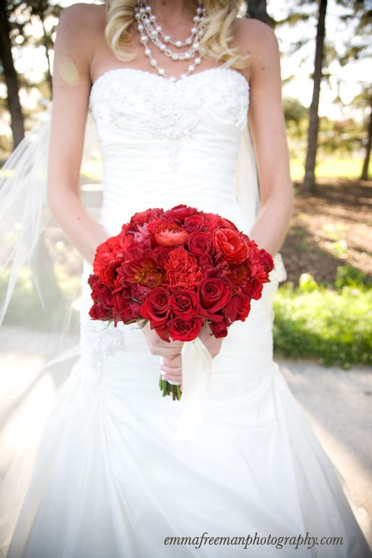 Red Dahlias, Red Carnations, Red \