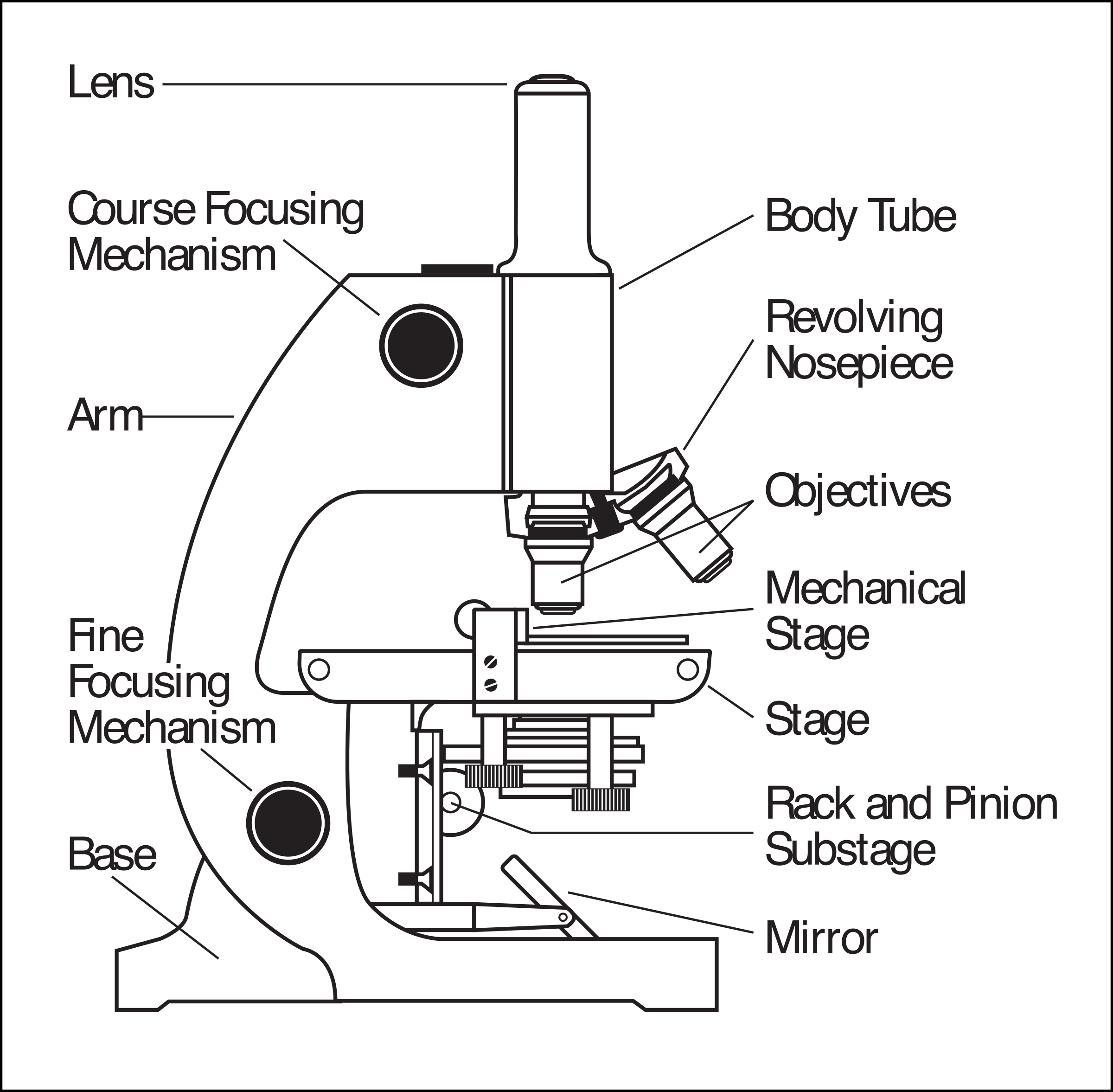 Microscope Parts Labeled With Images