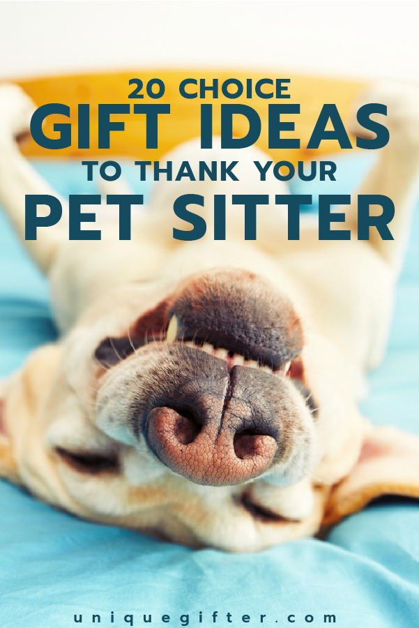 Thank You Gifts For Pet Sitters Sitting Yous Reciation Dog Walker Walking Christmas Presents