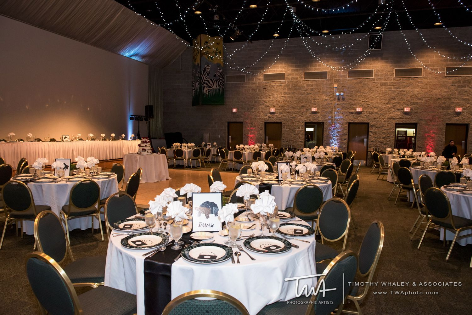 Twa Weddings At Brookfield Zoo Click The Picture To Visit Our