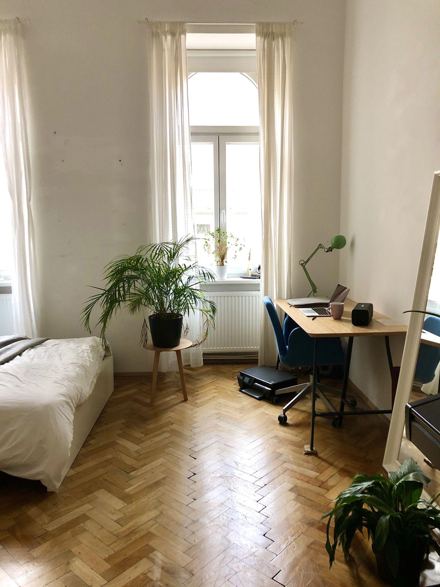 Wiener Wg Zimmer In Altbauwohnung Mit Dielenboden Wggesucht Wg Wien Altbau Dielen Holz Pflanzen Zimmer In 2020 Wg Zimmer Zimmer Einrichten Wohnen