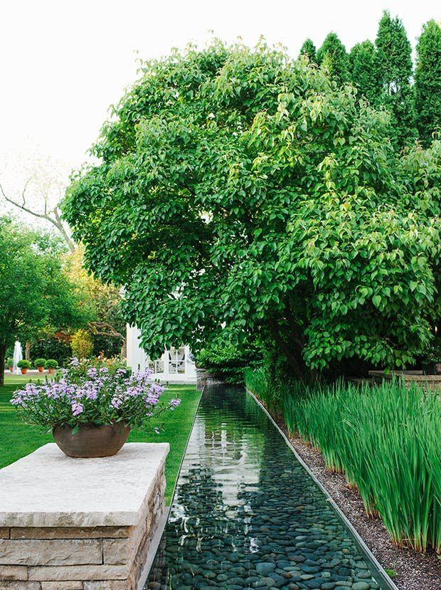 6 Big Garden Trends We\'re So Excited to See This Year | Pinterest ...