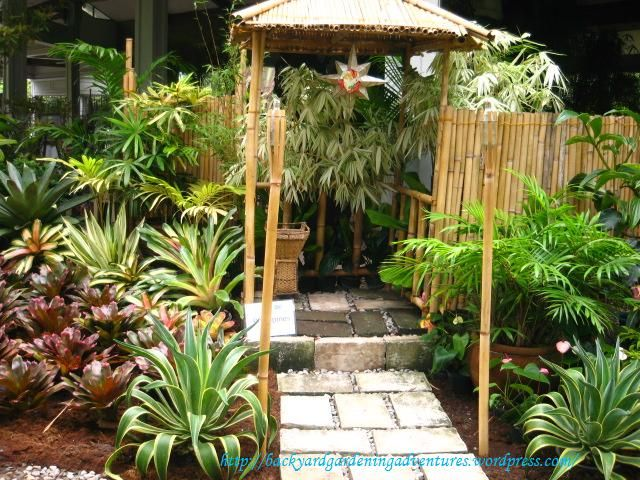Bromeliads And Bamboo Garden | Ornamental Plants And Flowers Used And Sold  At The Garden Show