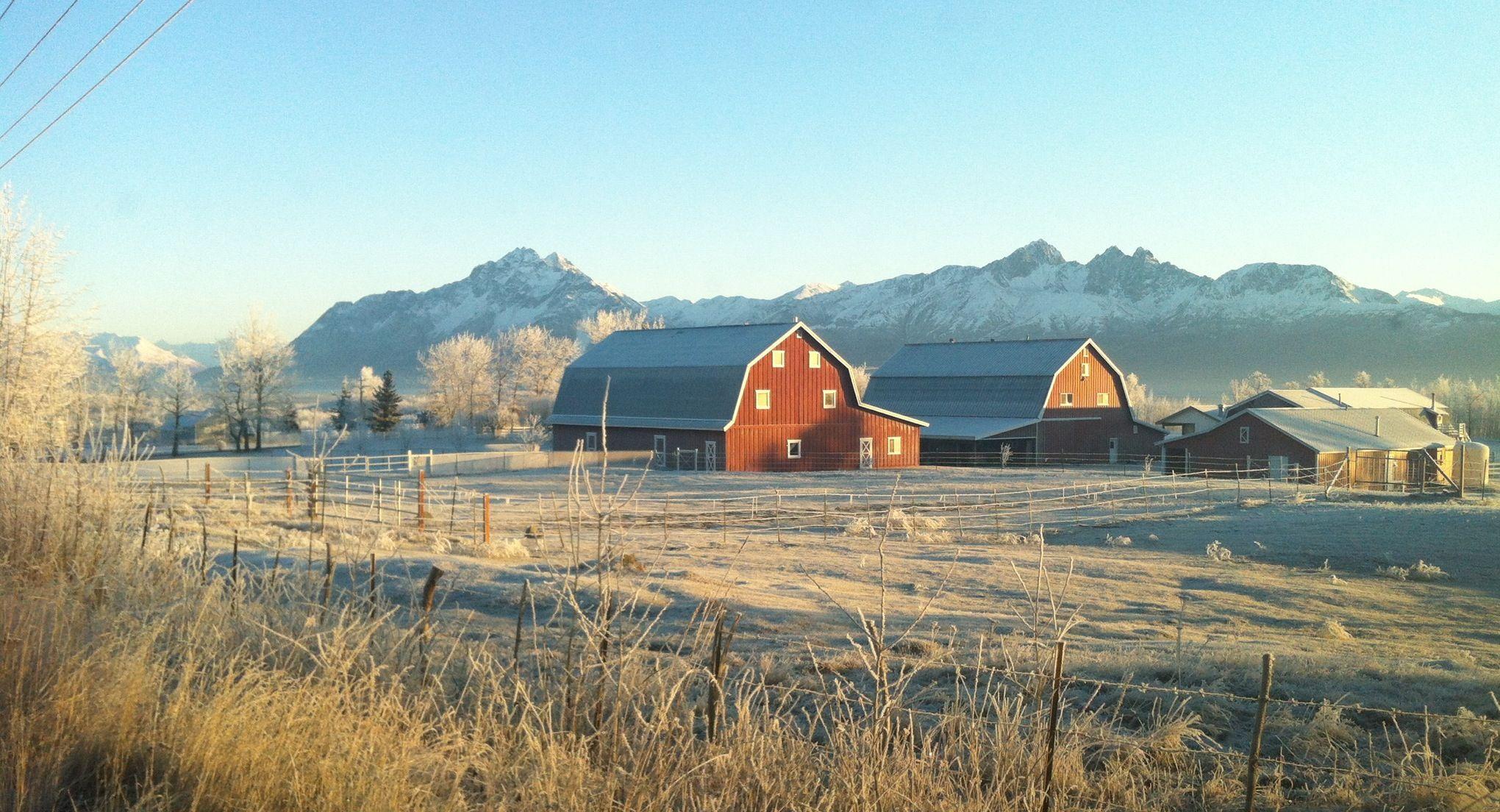 Wasilla, AK Matanuska Susitna Country Land 0.540000 acre ... |Wasilla Alaska Landscape