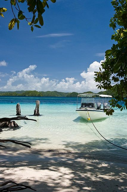 Palau! I'm saving up to go here after my surgery!!!!