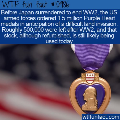 Pin On Facts