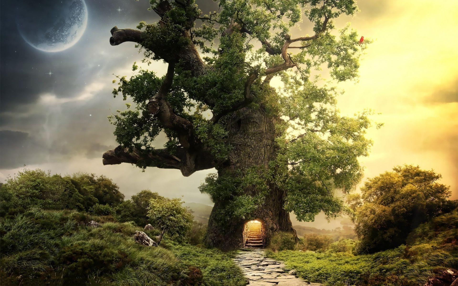 fantasy tree - Buscar con Google