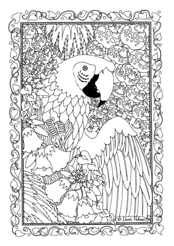 advanced doodle art of parrot difficult coloring pages for adults