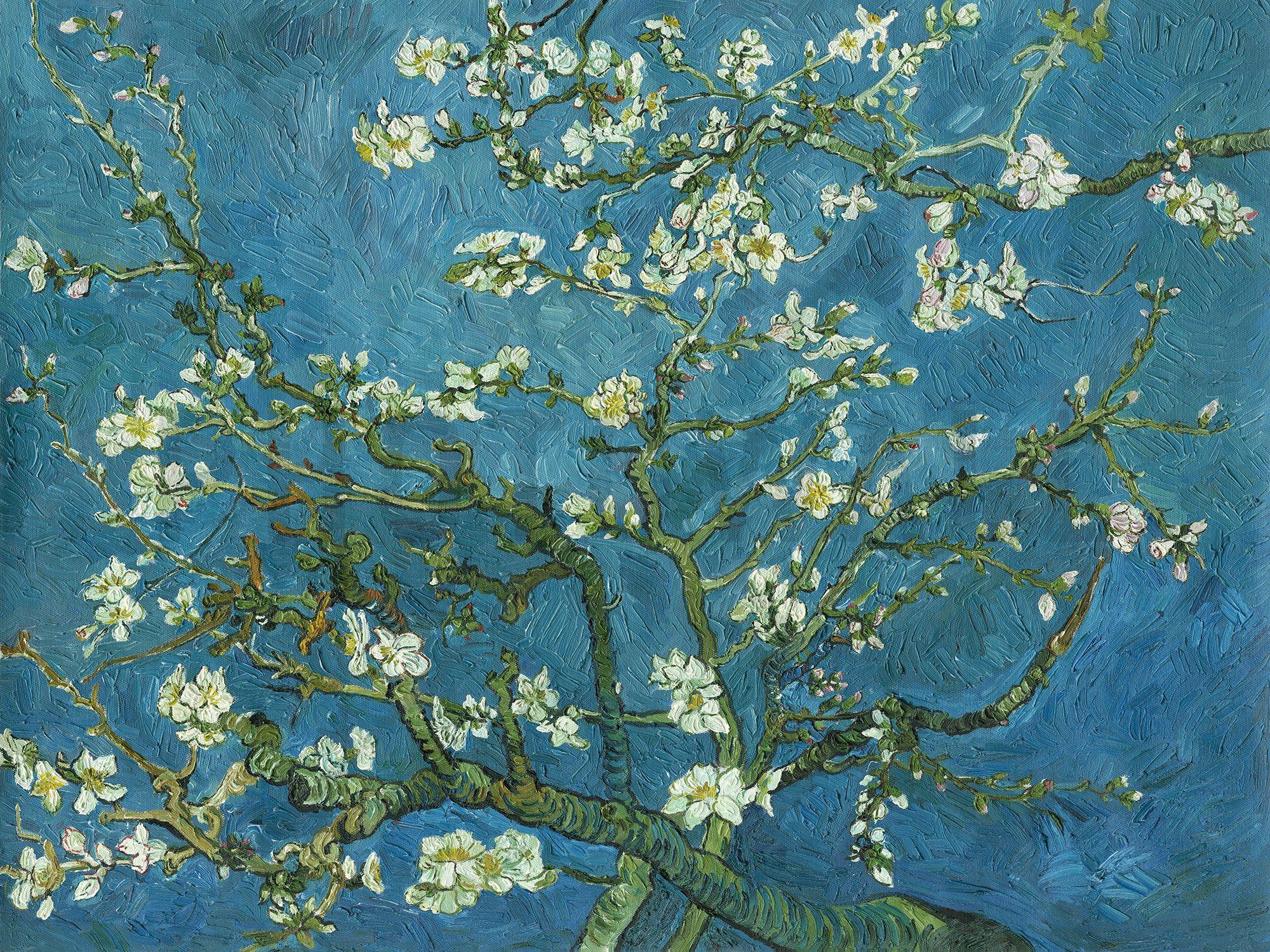 van gogh almond blossom fototapeten tapeten photowall wallpaper pinterest tapeten. Black Bedroom Furniture Sets. Home Design Ideas