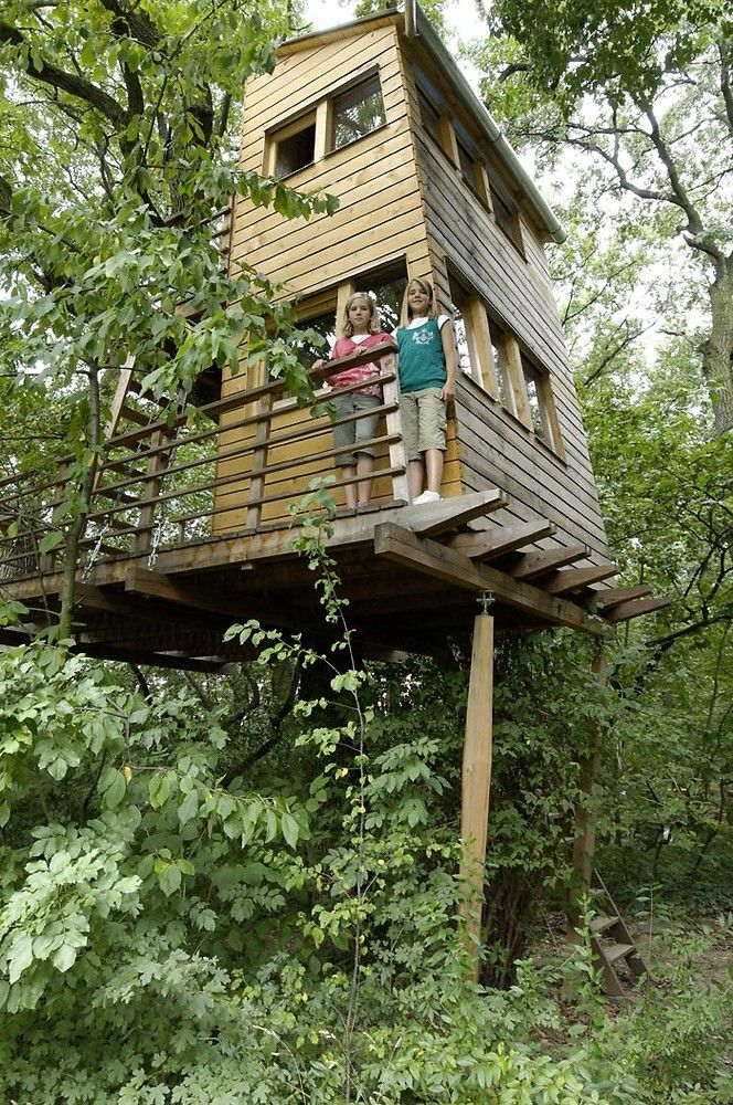 Tree House (Baumhaus)
