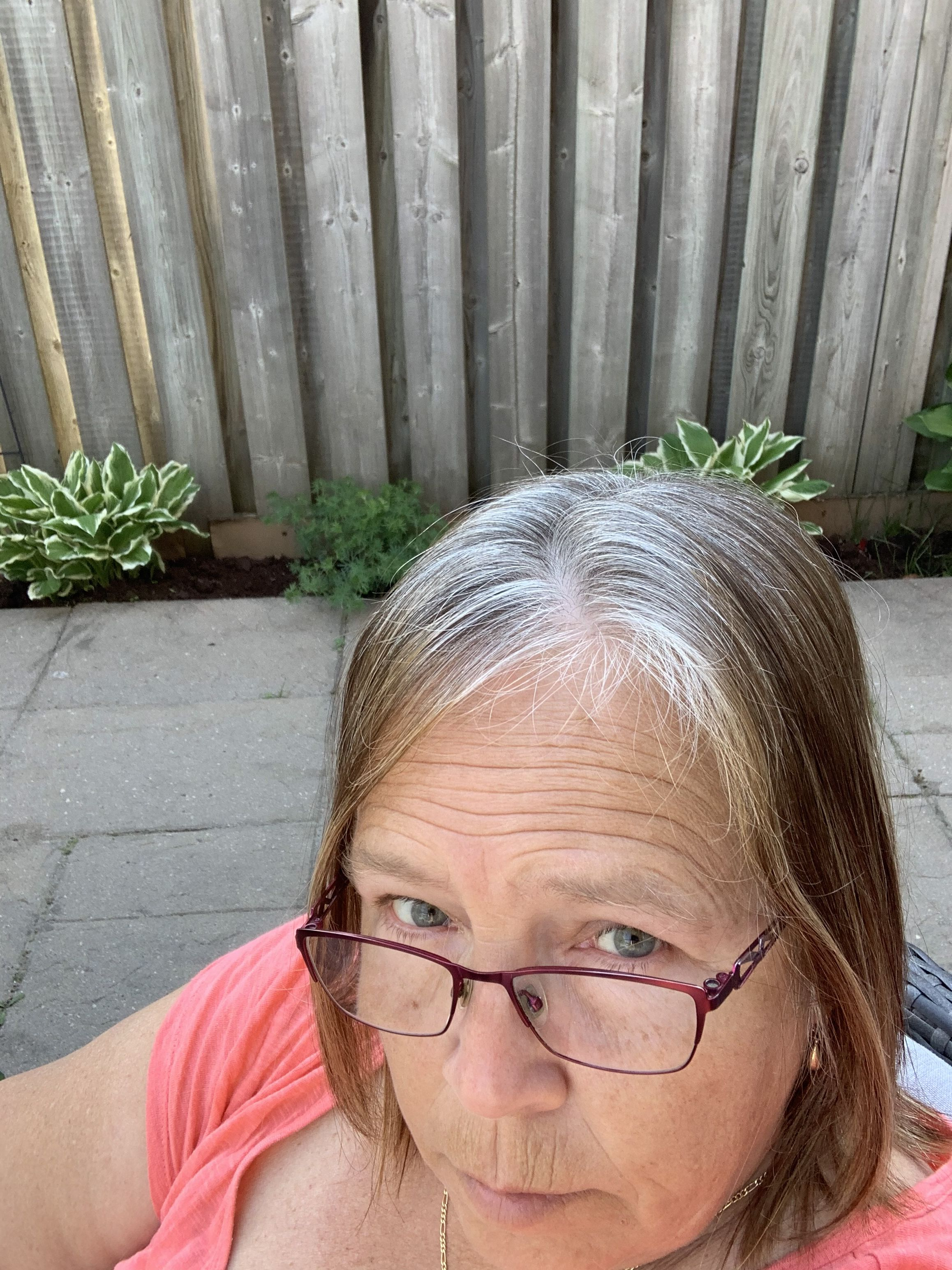 Pin by Antolyn on Grey hair transition   Transition to