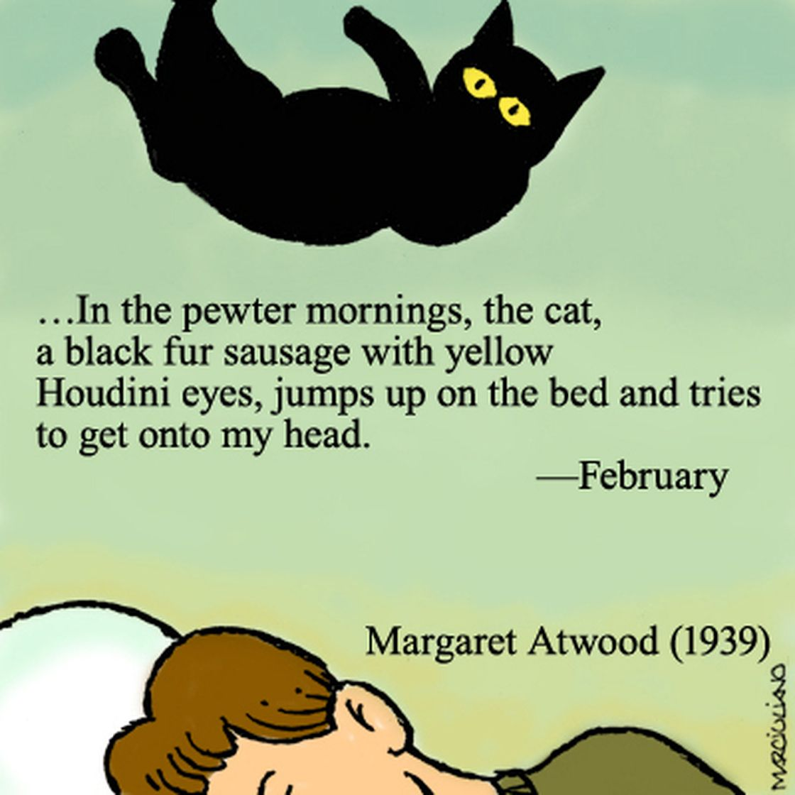"""Margaret Atwood is a confirmed cat lover. In 1977, she drew a cartoon of herself covered in cats, writing, """"I have a lot of cats. What else can you do with a B.A. these days?"""""""
