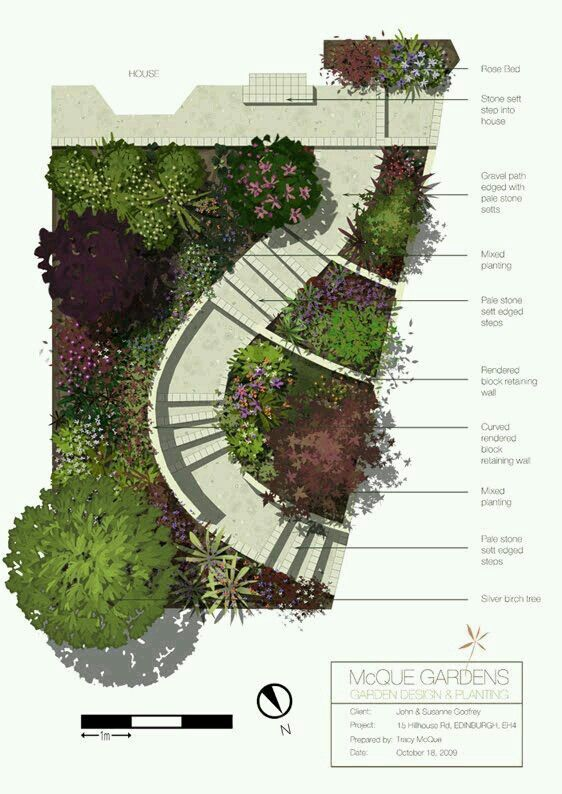 Hand Drawn Colour Front Garden Design In Edinburgh