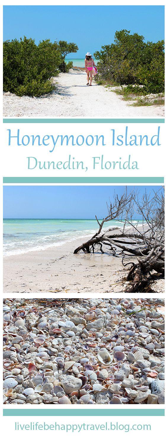 Live Life Be Happy: Honeymoon Island State Park (Dunedin, Florida)