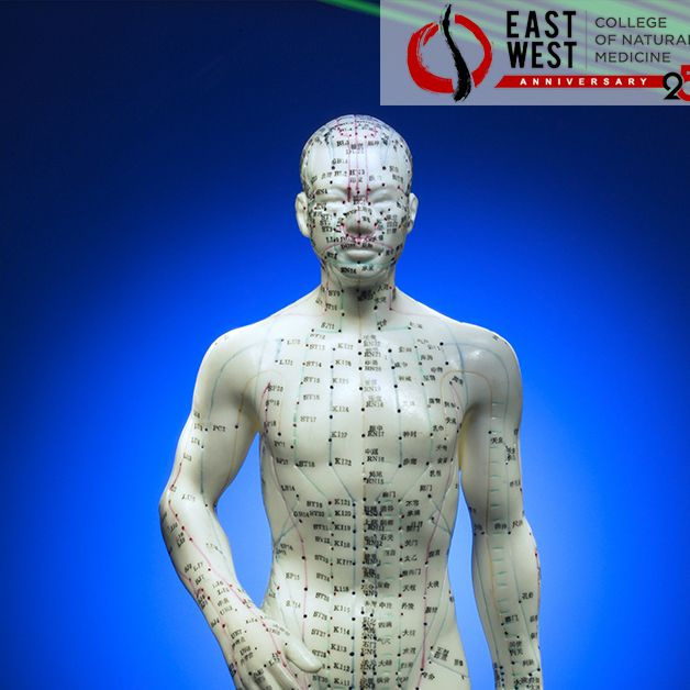 Learn how acupuncture physicians communicate effectively ...