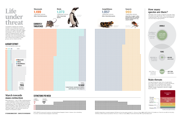 Biodiversity: Life – a status report : Nature News & Comment