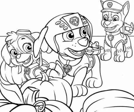 skye, zuma and chase from paw patrol | paw patrol coloring pages, paw patrol coloring, paw patrol