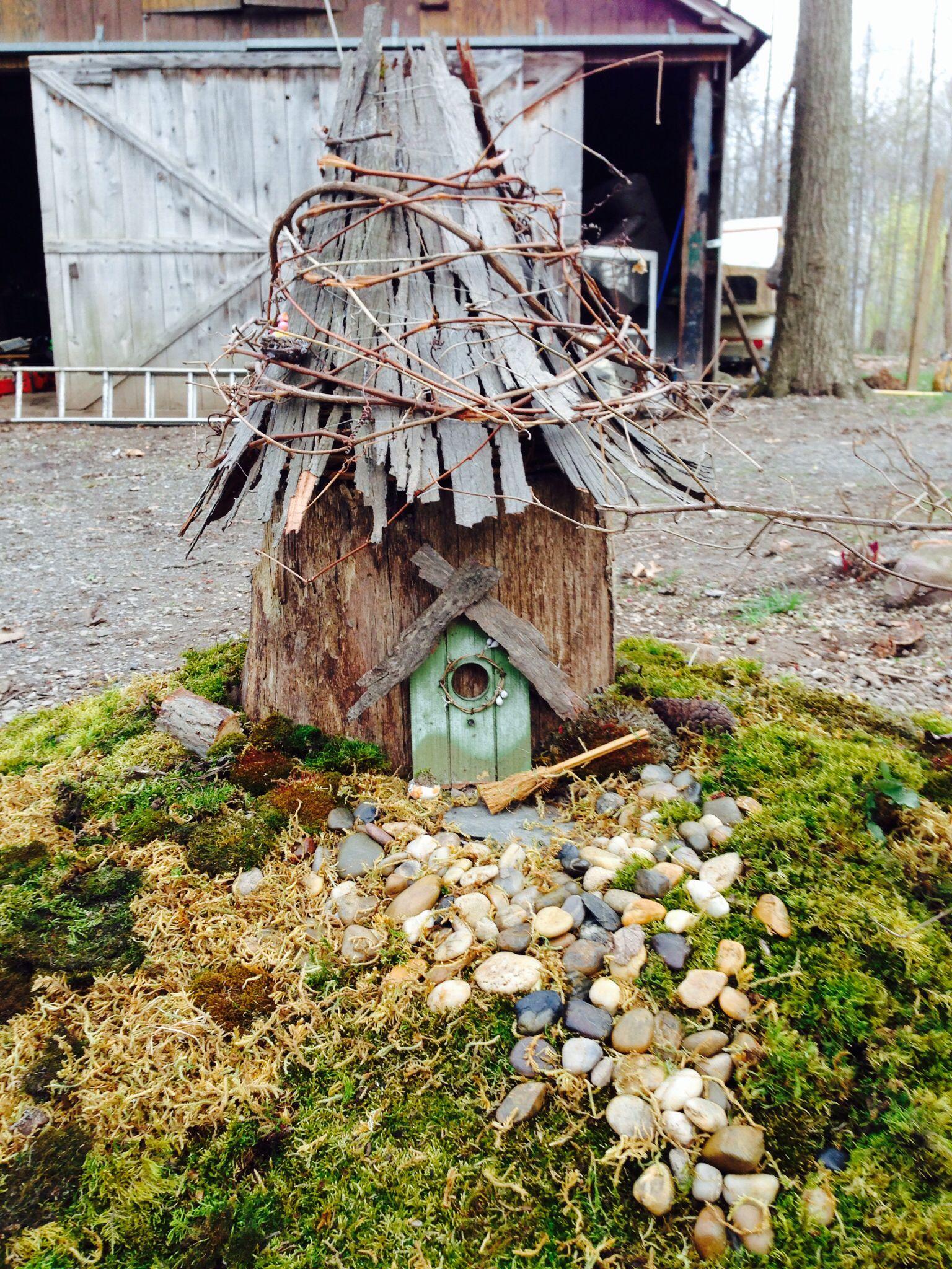 Grapevines care and feeding fairy garden houses fairy