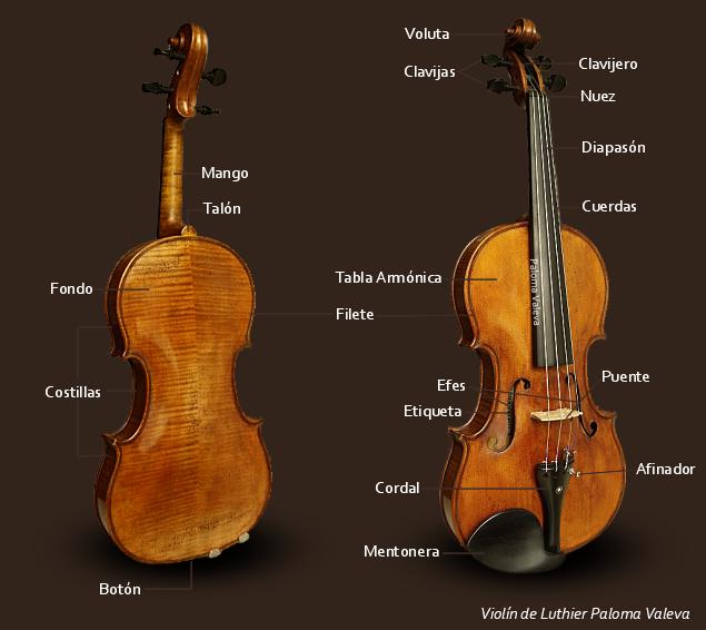 Partes Del Violin Paloma Valeva Violines Tatuajes De Violines Tocando Violin