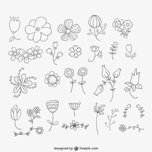 Drawing Flowers|Many Blooms To Choose From|-- This is quite the
