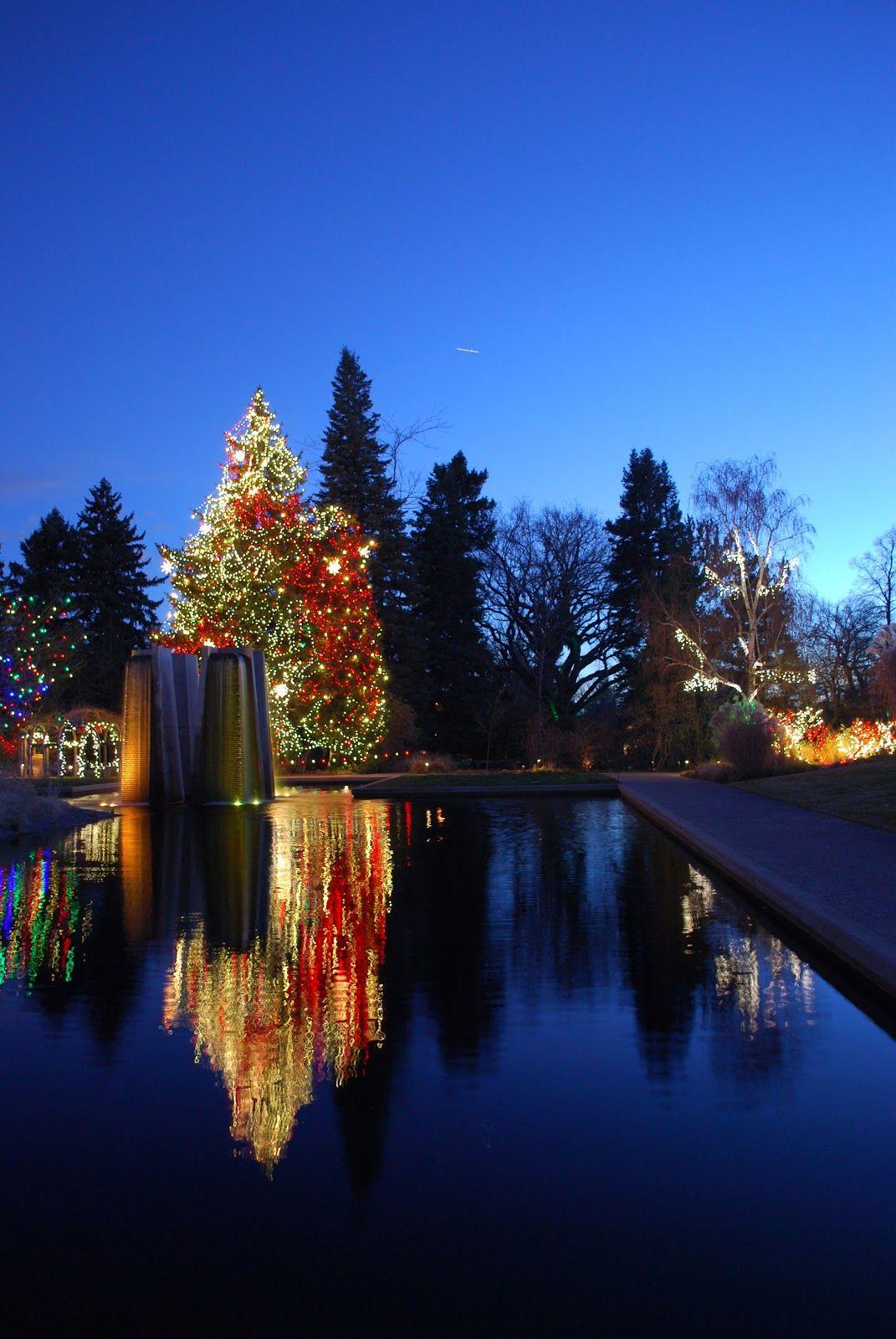 holiday lighting at Denver Botanic Gardens via The Art