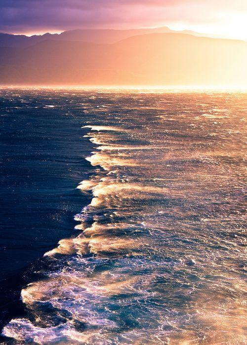 """Y la ola amarilla,   la marea de sol,   en su cresta nos alza,   en los cuatro horizontes nos dispersa   y nos devuelve, intactos,   en el centro del día, a ser nosotros.""""    Octavio Paz"""