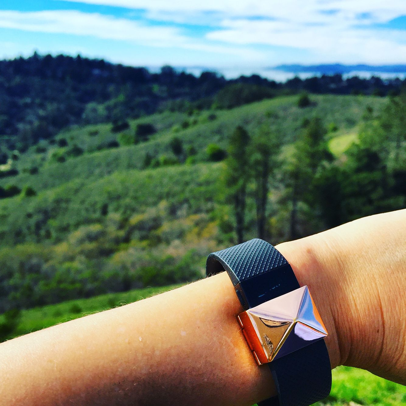Rose gold stud charm for the fitbit charge hr bezels u bytes