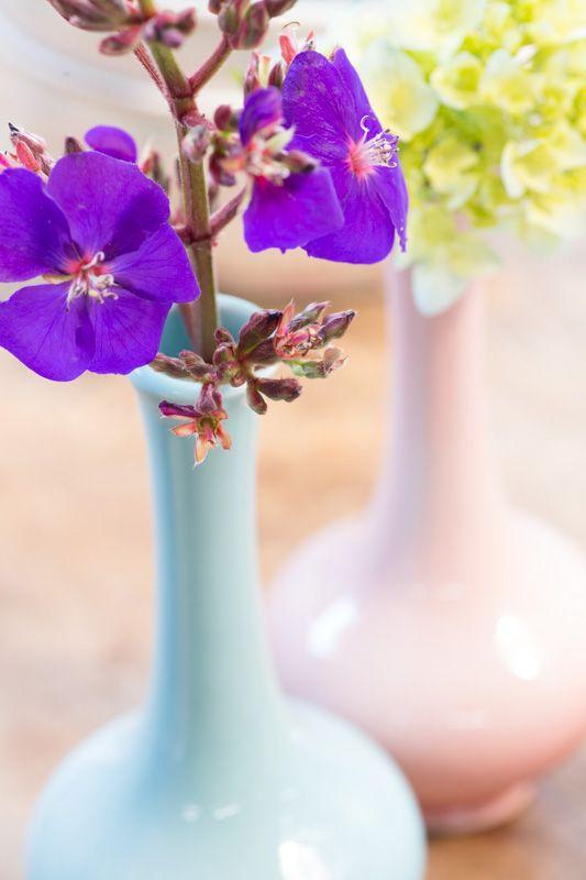 ¡Qué lindos! Floreros colección Home Sweet Home Corona