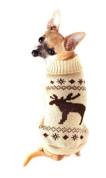 Wolters Cat & Dog Elk Knitted Dog Jumper | Pet & Animal products ...