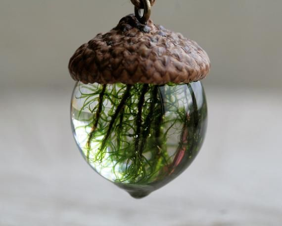 Real Moss Acorn Necklace Eco Friendly Gift Green Moss Real Plant Woodland Botanical Nature Lover Jewelry Moss Terrarium Pendant Eco Friendly