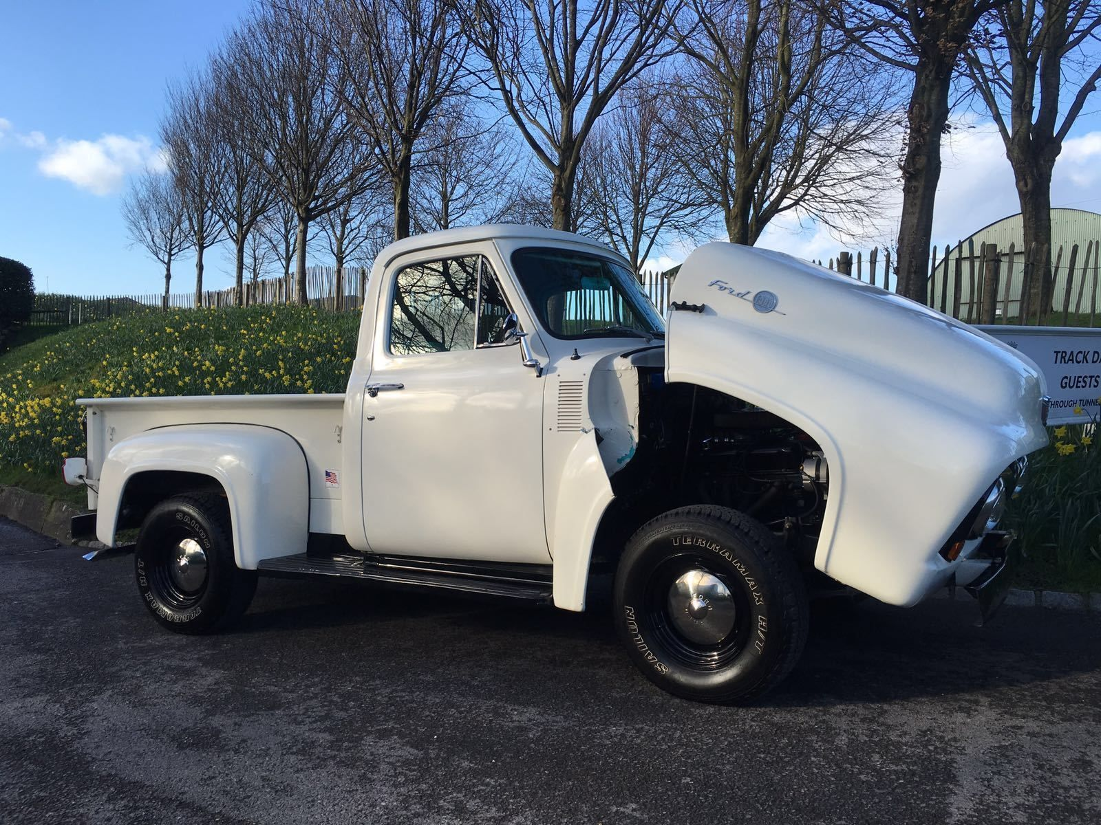 1955 Ford F100 Pick Up Show Truck Hot Rod V8 Cars And Ebay