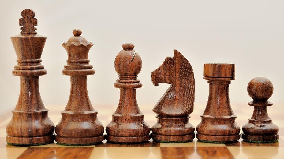 Shesham Wood Staunton Tournament Chess Set With German Knight Http Www Chessbazaar Com Chess Pieces Economy Ches Wooden Chess Pieces Wood Chess Wooden Chess