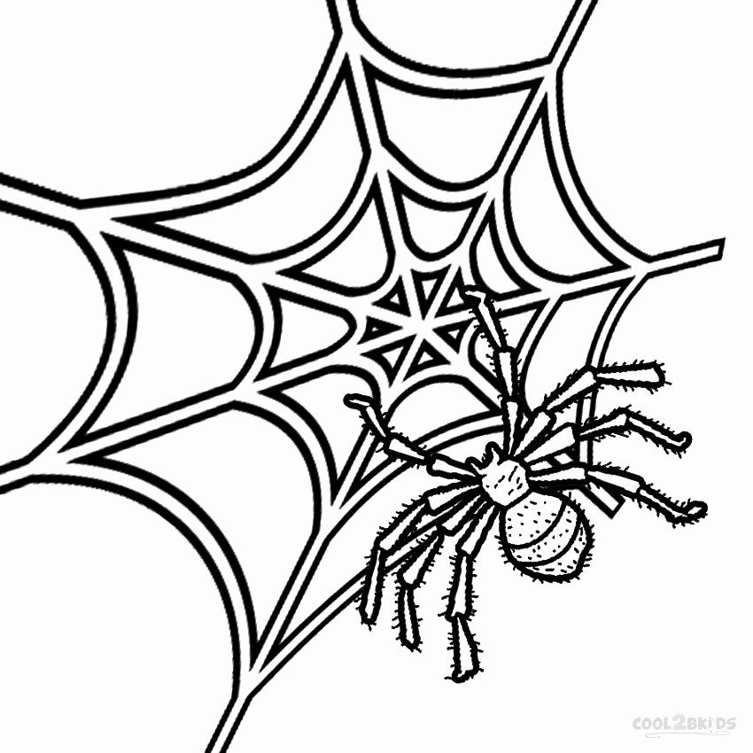 Spider Web Coloring Page Fresh Printable Spider Web Coloring Pages For Kids Coloring Pages For Kids Coloring Pages Inspirational Cartoon Coloring Pages