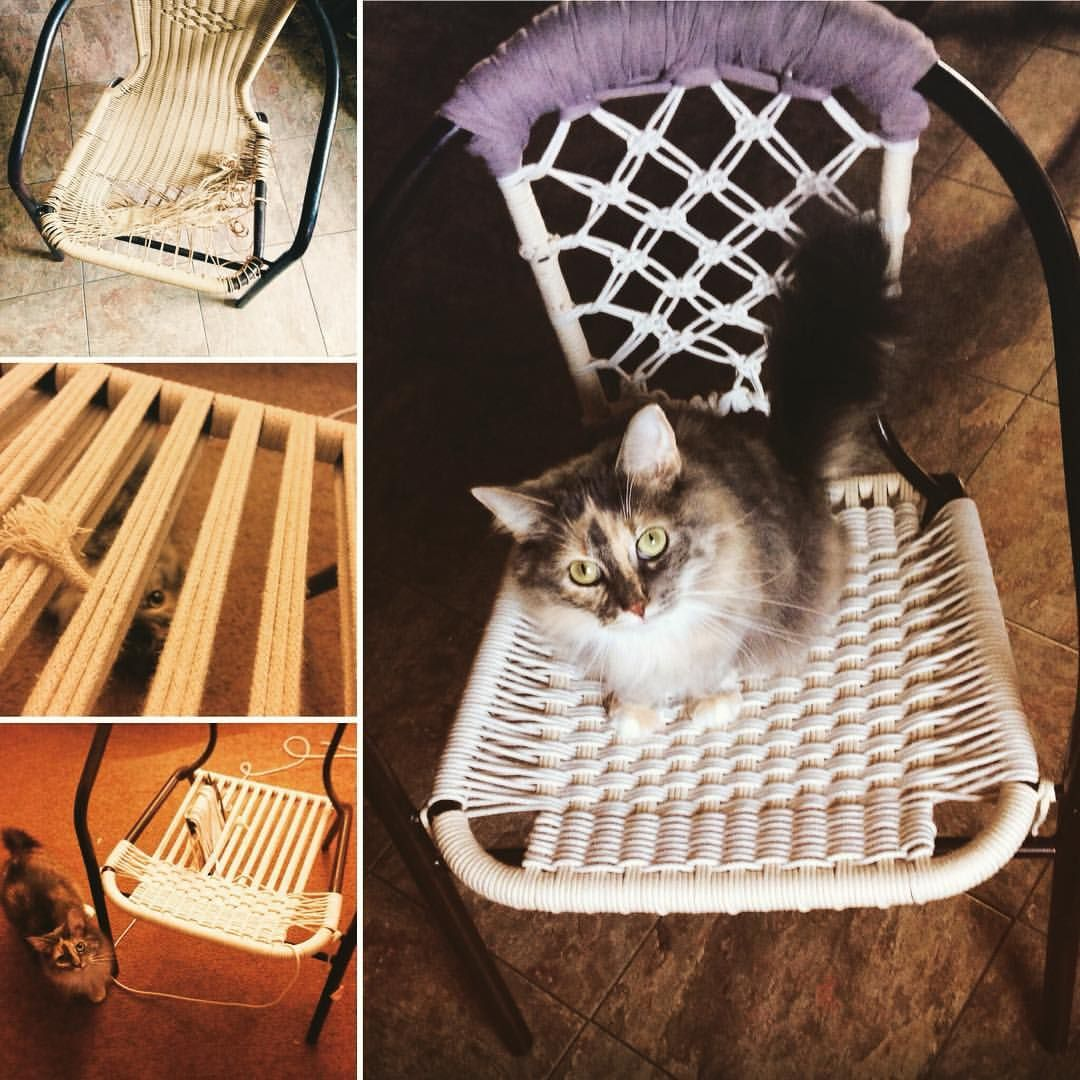 Finished #upcycle #sundaymorning #cats_of_instagram #knotwork #diy See this Instagram photo by @k3_artistry • 4 likes