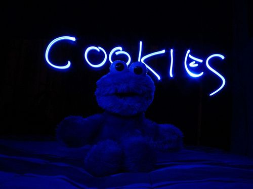 I love cookie monster. (: