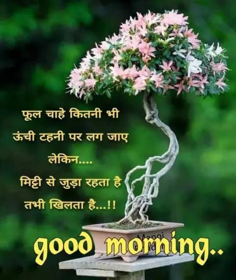 Birthday quotes #morning #quotes #hindi #friends good morning quotes in hindi for friends, good morning quotes saturday, good morning quotes inspirational saturday, good morning quotes for boyfriend, good morning quotes in urdu, good morning quotes positive, good morning quotes funny humor, good morning quotes positive smile, good morning quotes for him love, good morning quotes for him, good morning quotes thoughts, good morning quotes inspirational thursday, good morning quotes inspiration