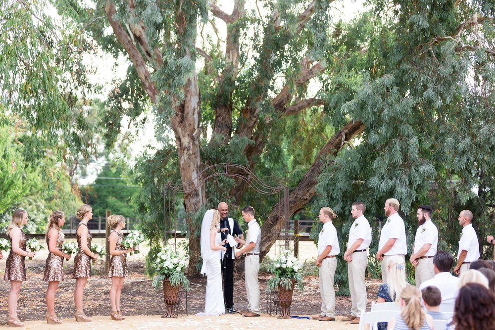 Ceremony Under Tree Metal Arbor Chico-California-Backyard-Wedding