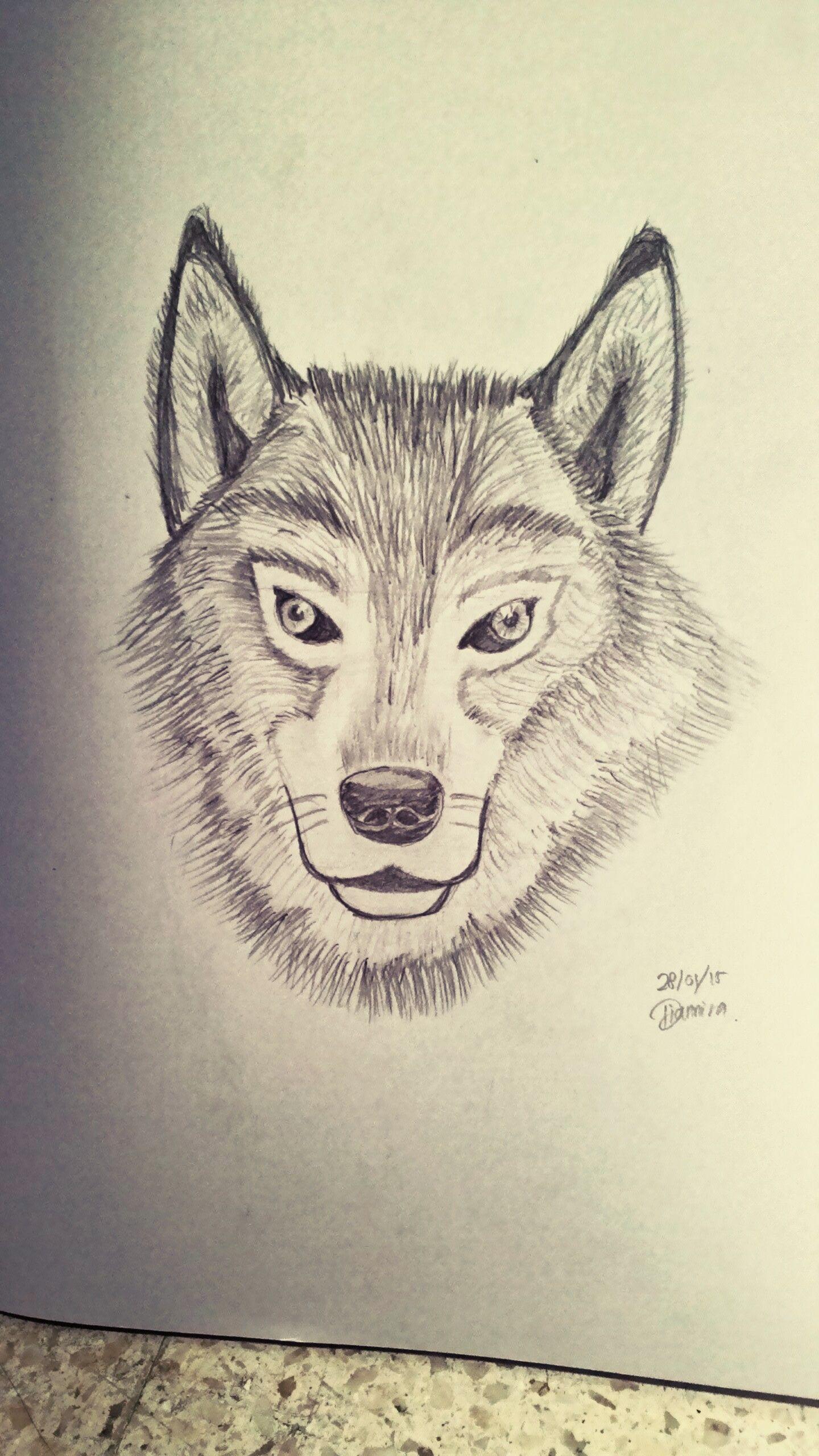 Serigala Coretan Pinterest