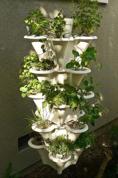 Hydroponic Tower, Choose the Best (Get Started with Ease ...