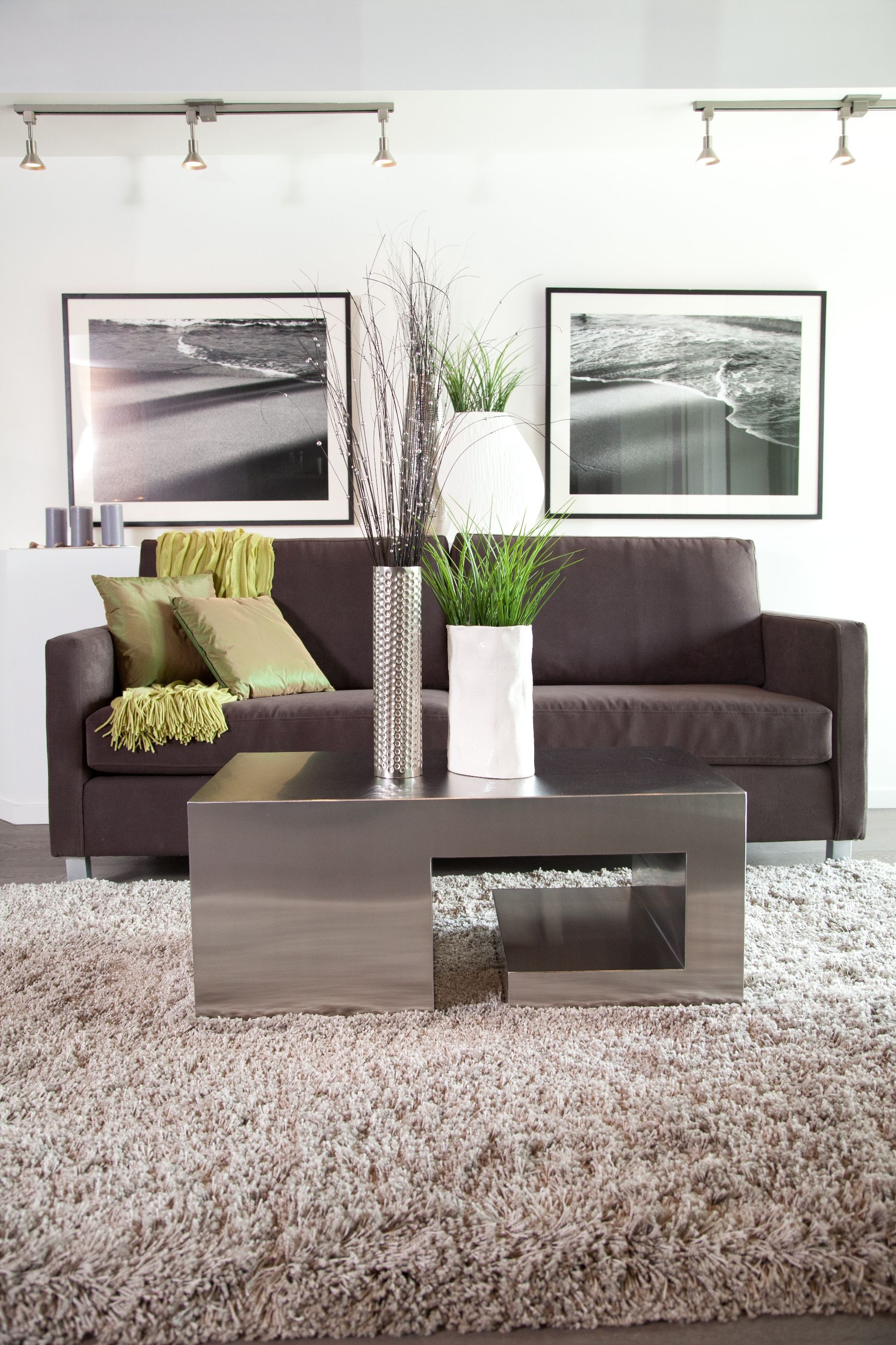 Apartment Living Room With Dark Brown Sofa Cream Shag