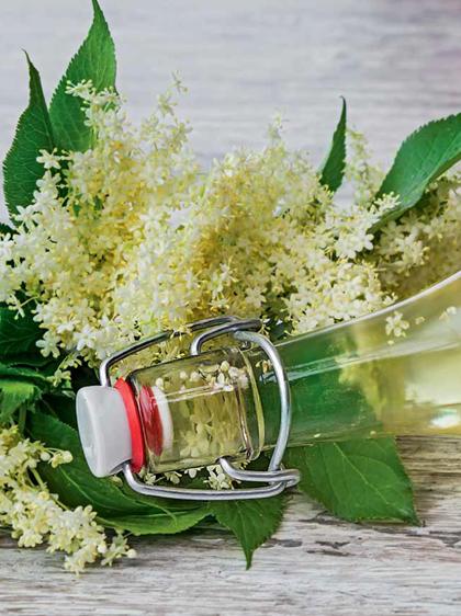 Dieta Nawilzajaca Z Ksiazki Koktajle Dla Zdrowia I Urody Czesc 2 Mason Jar Mug Kitchen Witch Mason Jars
