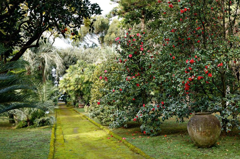 Villa Astor Sorrent Sorrent Garten Parkanlage