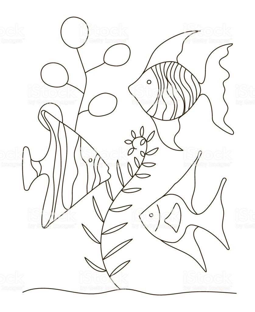 Tropical Fish Coloring Page Youngandtae Com In 2020 Fish Coloring Page Pikachu Coloring Page Coloring P In 2021 Fish Coloring Page Pikachu Coloring Page Coloring Pages