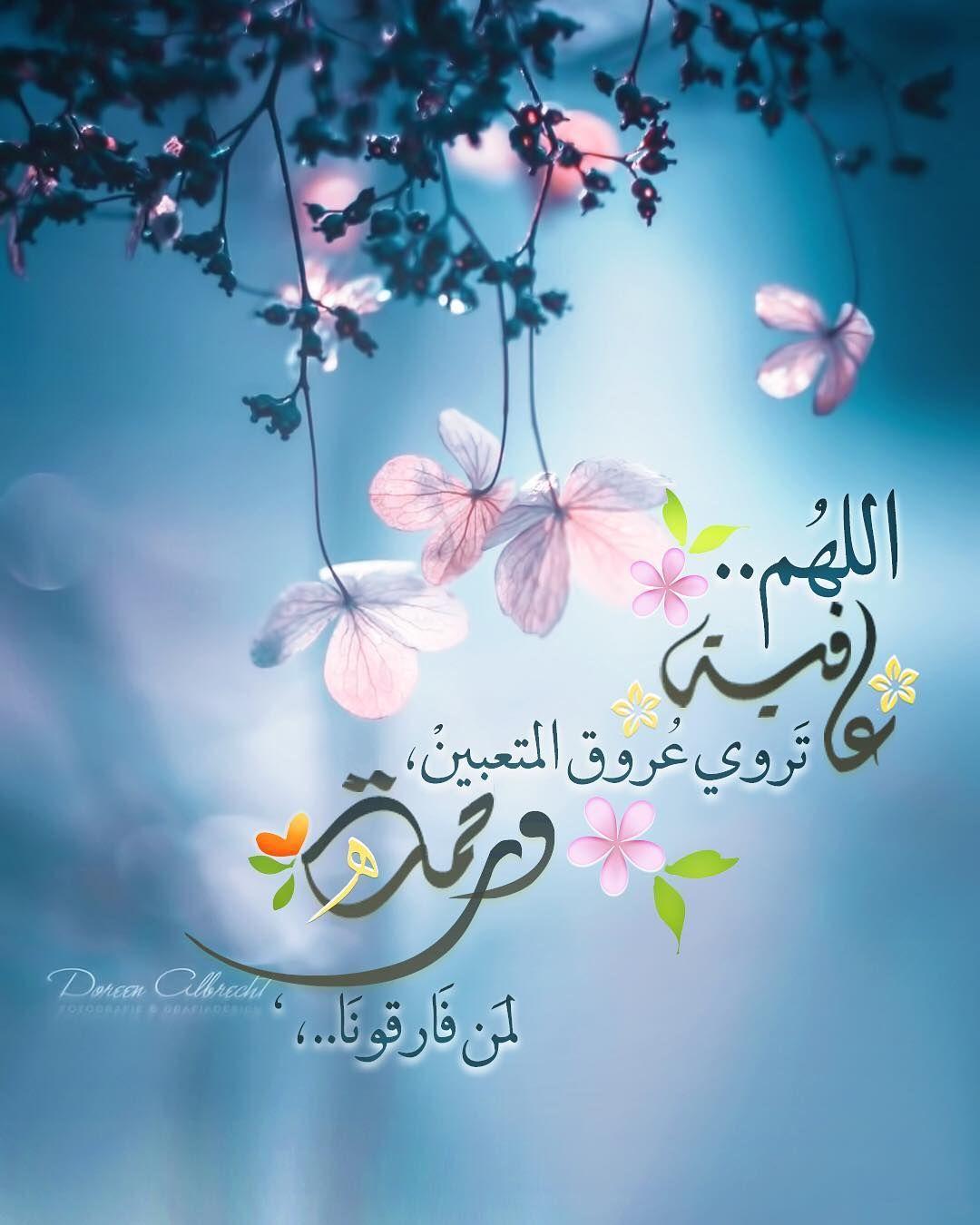 L Image Contient Peut Etre 1 Personne Fleur Et Texte Islamic Quotes Wallpaper Islamic Images Islamic Wallpaper