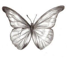 Photo of Auf diese Seite erkennen Sie, wie kann man selber ganz schnell einen Schmetterli…
