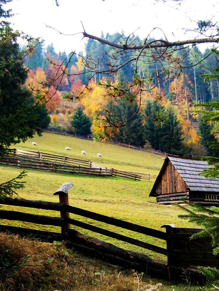 Autumn colours slovakia by woodennest old barns
