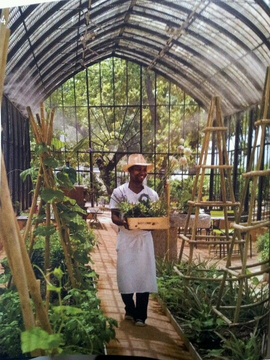 Invernadero de hierro y cristal arquitectura garden - Invernaderos de cristal ...